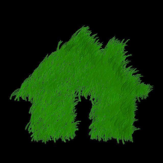 dům z trávy